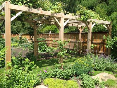 MA - Red Cedar Garden Pergola