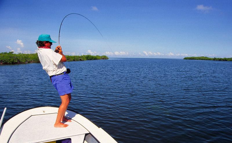 Terry Gunn Fighting Tarpon Fly Fishing Belize
