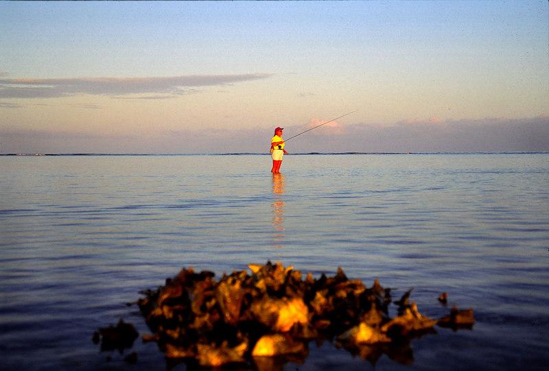 Wendy Gunn Bonefishing-Conch Pile Fly Fishing Turneffe Belize