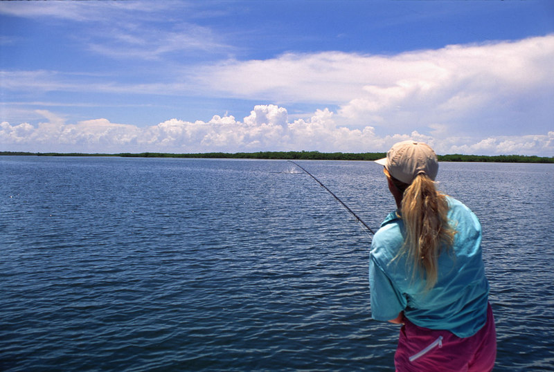 Wendy Gunn Fighting Jumping Tarpon Fly Fishing Belize