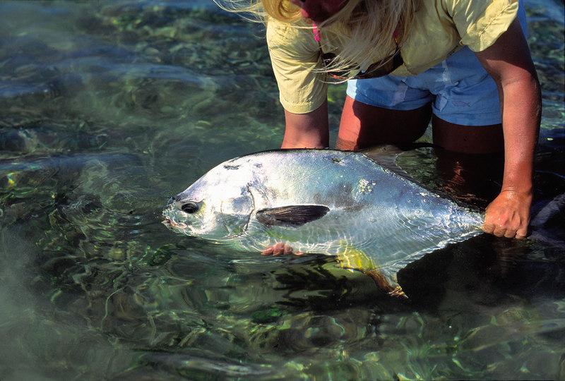 Wendy Gunn Releasing Belize Permit Fly Fishing