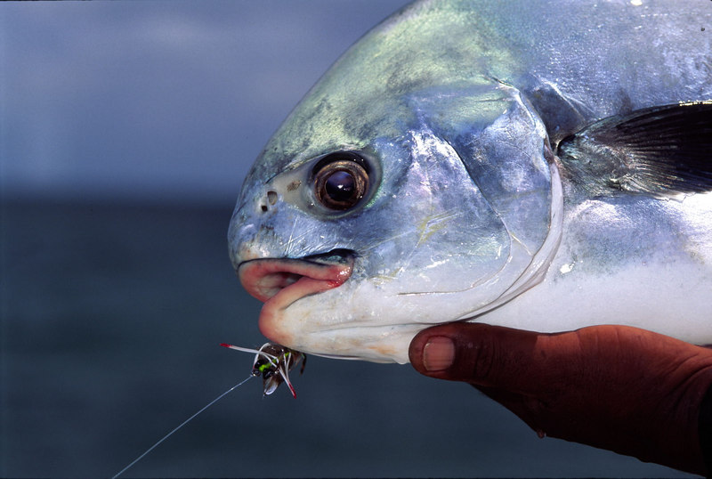 Permit Belize Fly Fishing