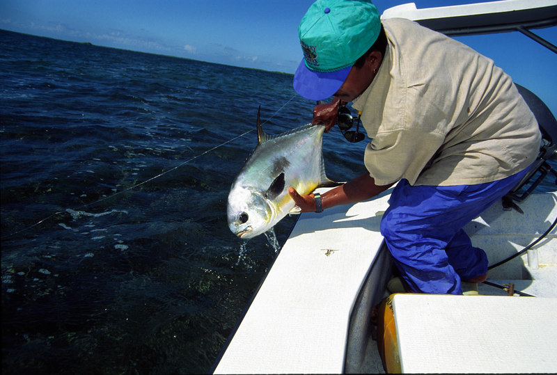 Guide Releasing Belize Permit Fly Fishing