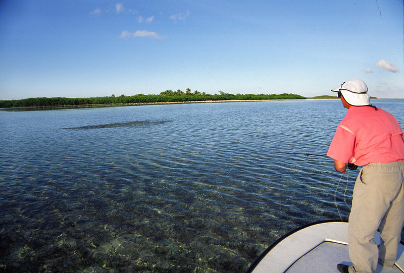 This is what happens when you cast too long on Bonefish Fly Fishing Turneffe Belize