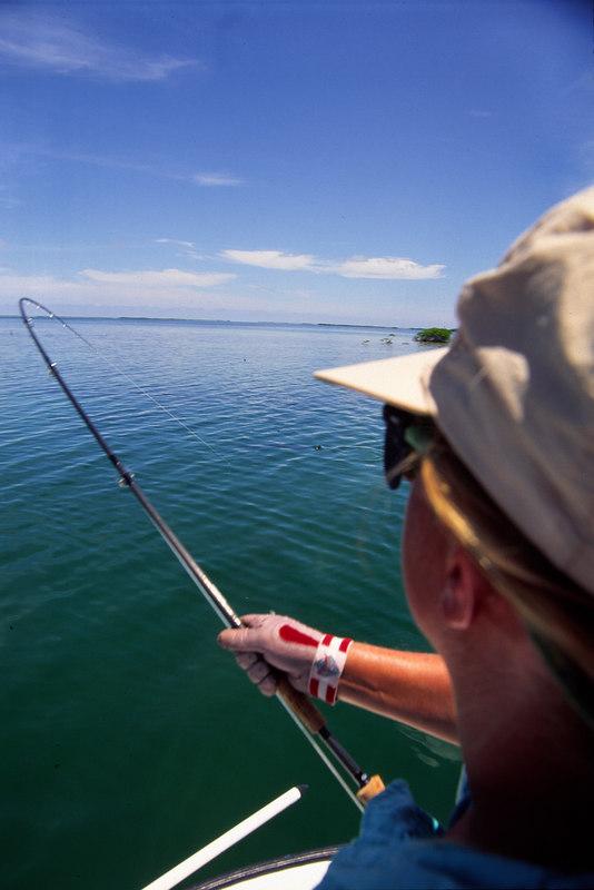 Wndy Gunn Fighting Tarpon Fly Fishing Belize