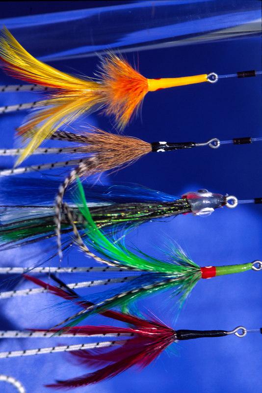 Tarpon Flies Tarpon Fly Fishing Belize