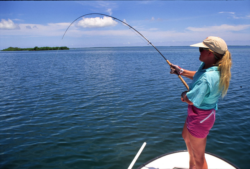 Wendy Gunn Fighting Tarpon Fly Fishing Belize