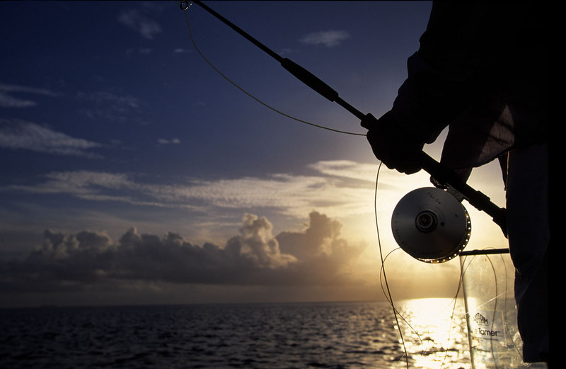 Tarpon Fly Fishing Florida Keys