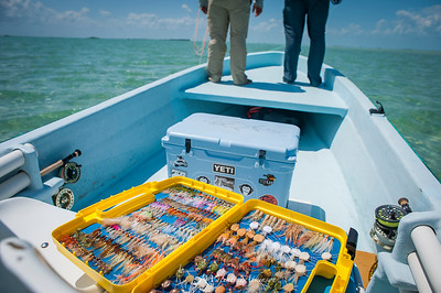 guides, assention bat, mexico, permit fishing