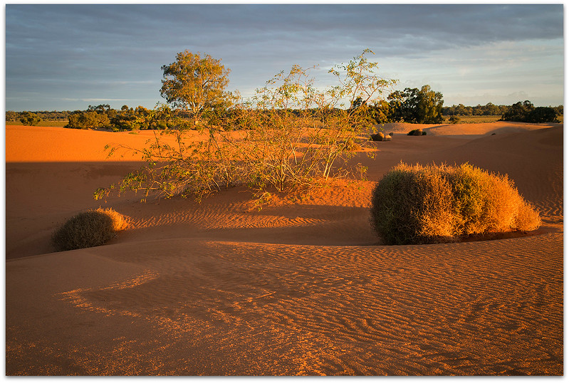 Perry Sand Hills 4