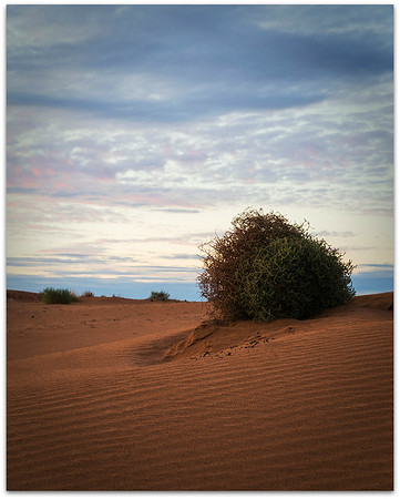 Perry Sand Hills 6