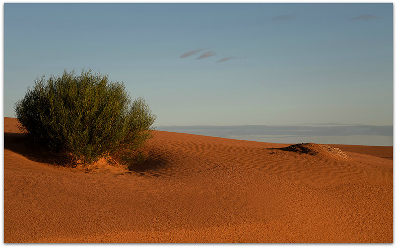 Perry Sand Hills 2
