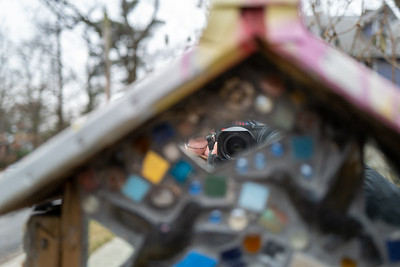 self-portrait in a little free library