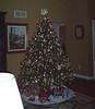Auntie's Tree