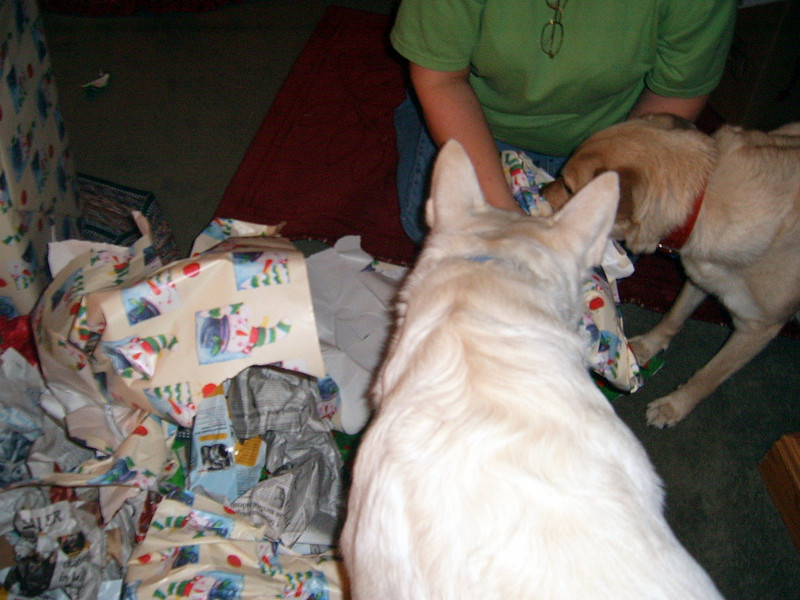 Dogs unwrapping their presents
