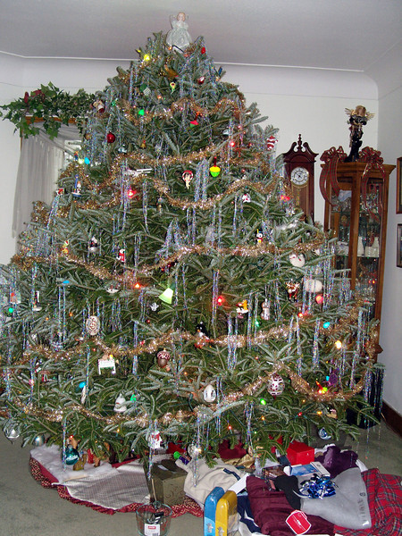 The Christmas tree.