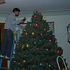 stephen trimming the tree