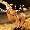 reindeer.