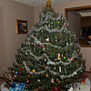 Uncle David's Tree