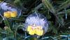Ornaments form the Virgin Islands