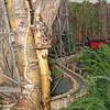 Entrance to botanical Garden Holiday Display