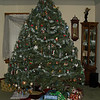 the christmas tree. smaller then usual