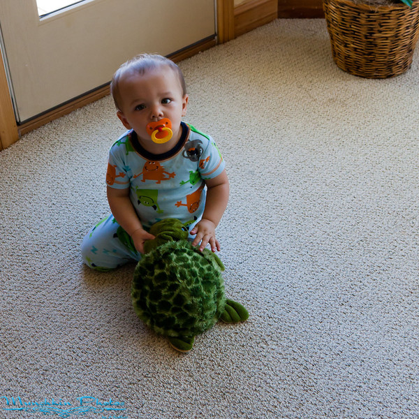 tyler and his turtle