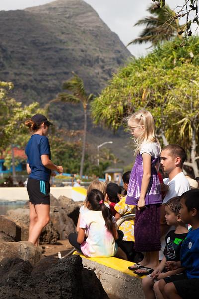 Hawaii-2010-026