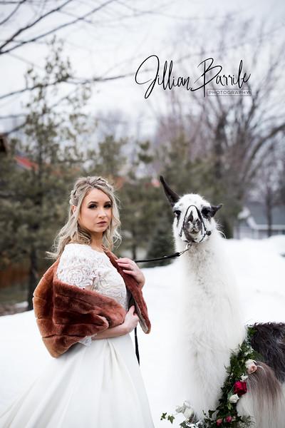 Llama1067