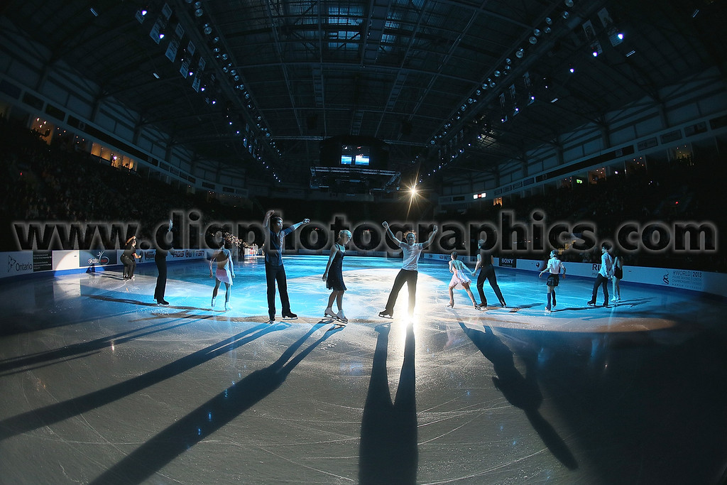 153949387DR135_2012_Skate_C