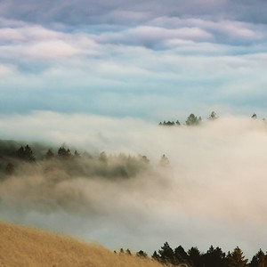 Above Mt Tam in Fog