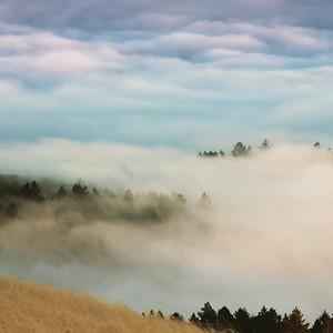 Above Mt Tam in Fog