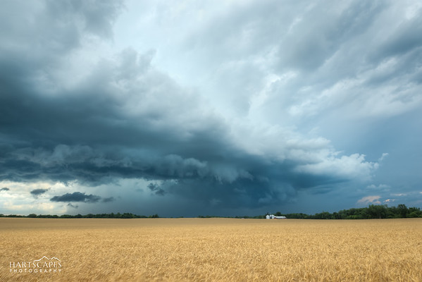 Stormy Country Field