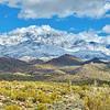 Four Peaks Snow