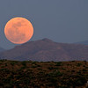Orange Super Moon