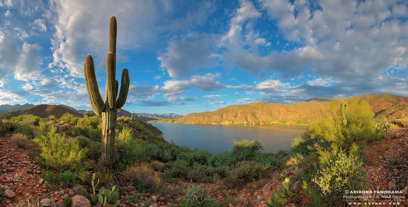 Apache Lake Hillside Morning Light