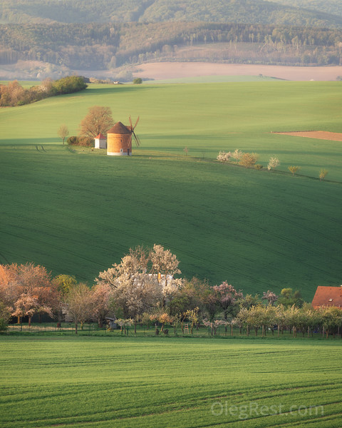 Windmill in Moravia