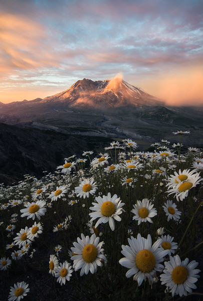 Sunlight illuminating Mt St Helens - Washington