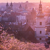 Blooming Prague
