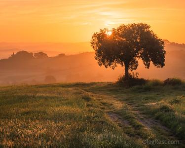 Sunrise in the Tuscany