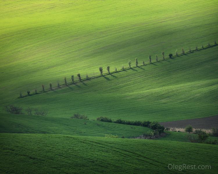 Green hill in Moravia