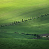 Green hill in Moravia