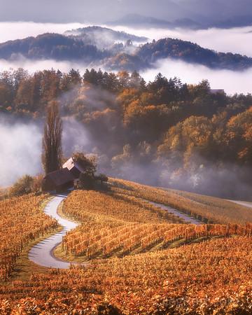 Heart of Slovenia