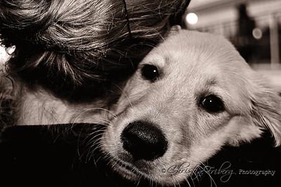 day168_puppylove