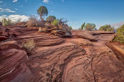 Dead Horse State Park, Moab Utah