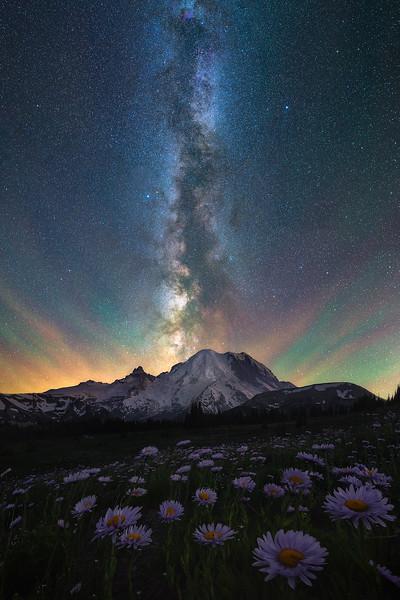 The night sky over Mt Rainier with wildflowers, Washington