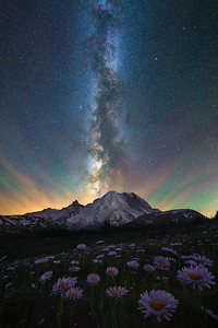 The night sky over Mt Rainier with wildflowers, Washington