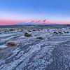 Desert Frost II