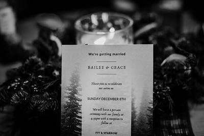 SuzanneFryerPhotography_BaileeGraceWedding-3781