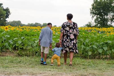 SuzysSnapshots_Sunflowers_Brittany-6279